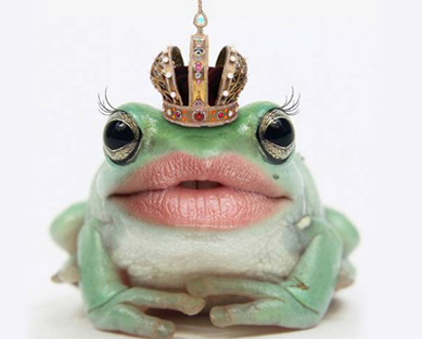 Lip balm love list the glamorganic goddess - Funny frog pictures ...